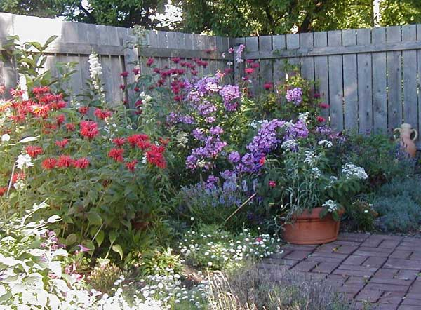 Flower garden design pictures house beautiful design for Perennial garden design