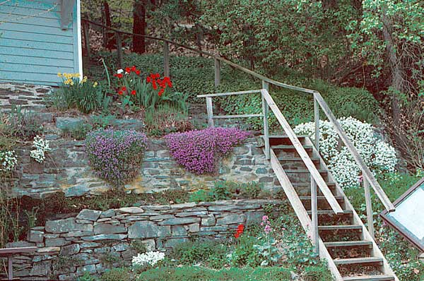 1000 images about steep garden on pinterest - Ideas for gardens on a slope ...